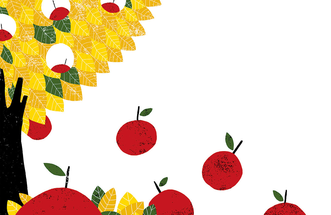 Cristina Martin apple tree illustration